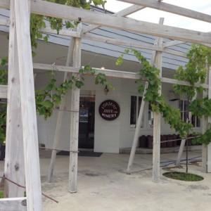【職場旅行モデルコース】山梨日帰りバスプラン~ハイジの村とシャトレーゼ工場見学~