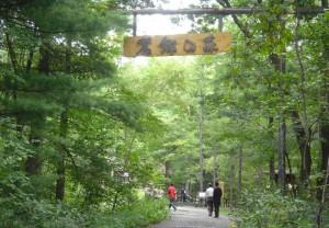 麓郷の森0110