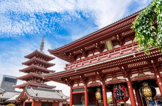 スカイツリーと築地を巡る東京満喫日帰りツアー