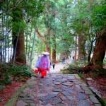 【職場・社員旅行モデルコース】今話題のアドベンチャーワールドと《世界遺産》熊野古道 1泊2日