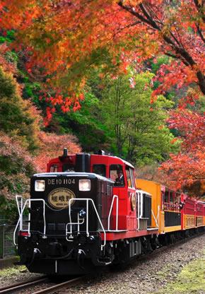 【職場・社員旅行モデルコース】日本の伝統・風情を感じる古都京都2日間