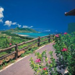 幹事様必見!憧れのビーチリゾート、離島・石垣島の社員旅行をご紹介