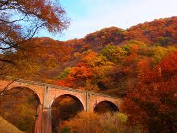 【職場・社員旅行モデルコース】妙義山の紅葉とめがね橋 日帰り