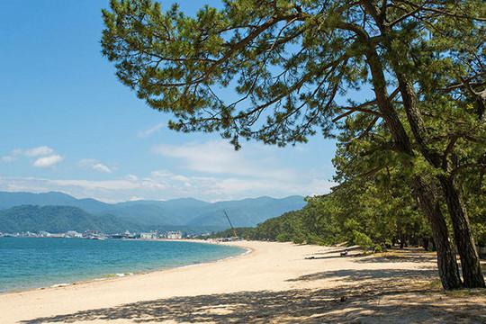 【職場・社員旅行 モデルコース】日本三大松原・養老の滝・琵琶湖 2日間の旅