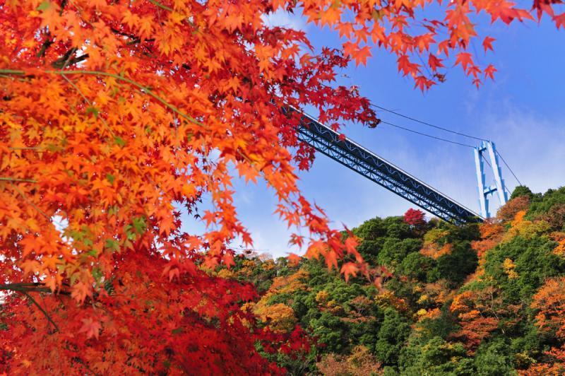 【職場・社員旅行モデルコース】ダイナミックな絶景を楽しむ茨城2日間