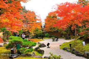 円通院と紅葉
