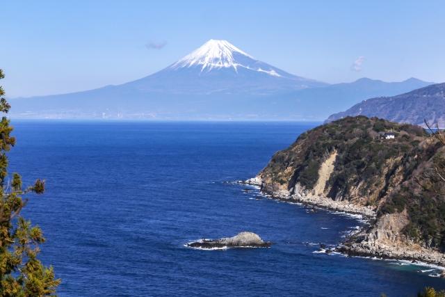 【職場旅行におすすめ】 この冬に行きたい!静岡温泉旅行1泊2日