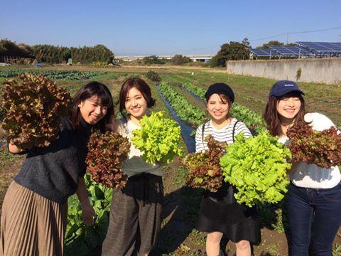 (千葉、横浜 1泊2日間) 収穫体験BBQと軍港クルーズ