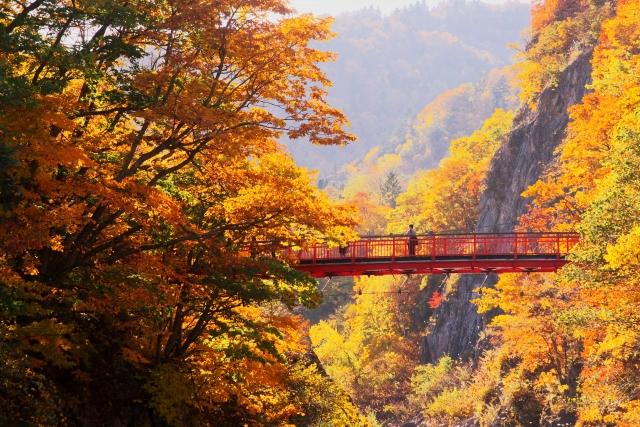 【職場旅行モデルコース】  充実の北海道2日間 ≪定山渓温泉&小樽&工場見学≫