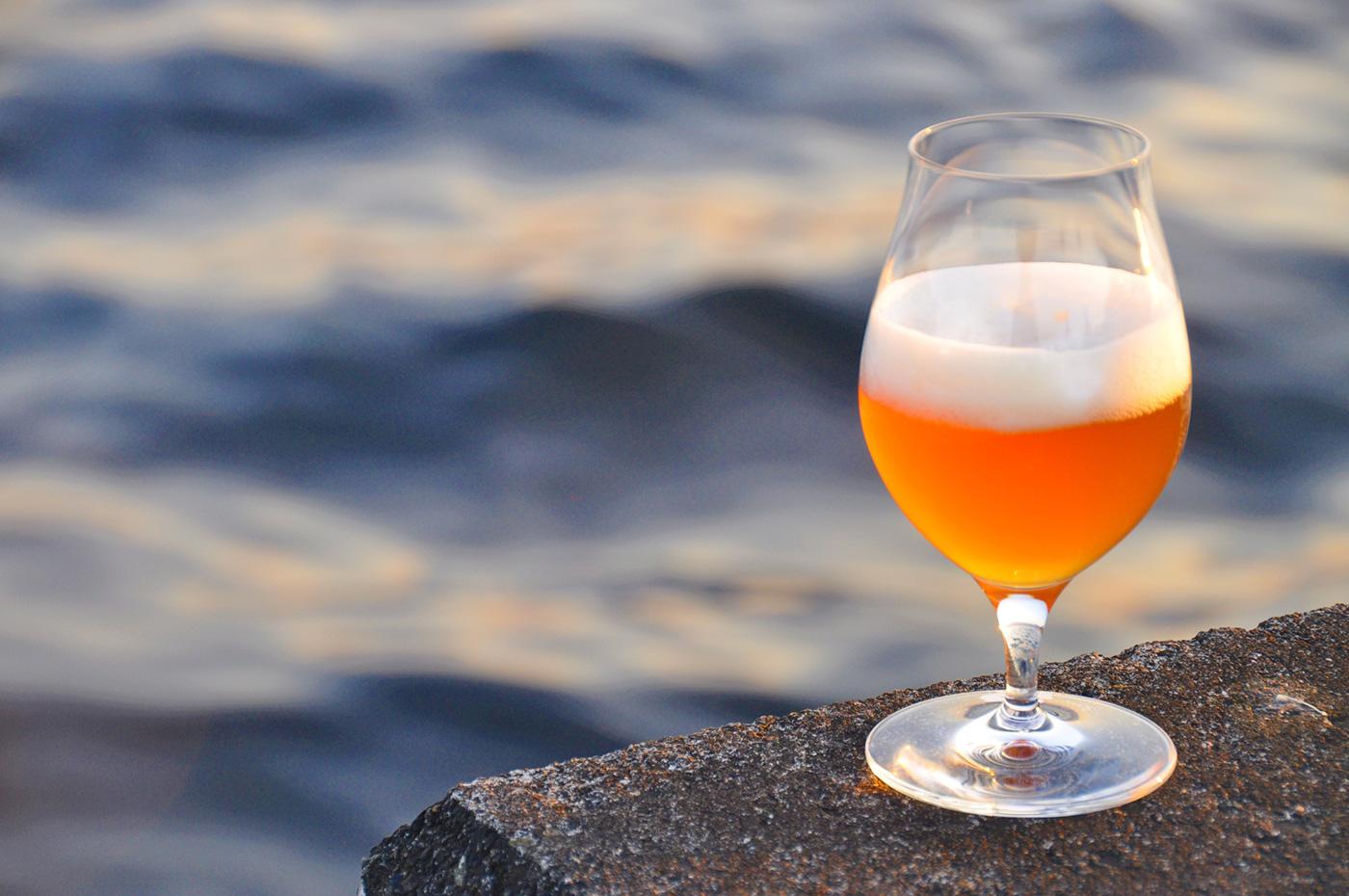 【飲食業の方におすすめ!】ビール&ワイン&山海の恵みに舌鼓!美味しい伊豆2日間
