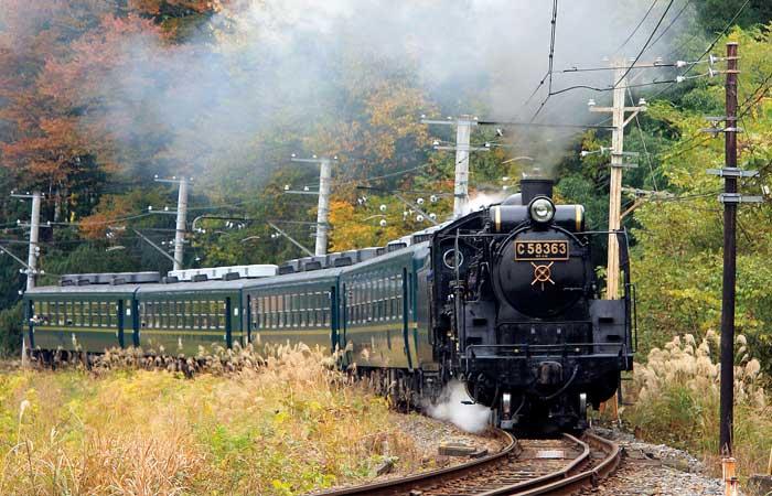 【日帰り社員旅行】ラインくだり&SL鉄道!体験がいっぱいの長瀞